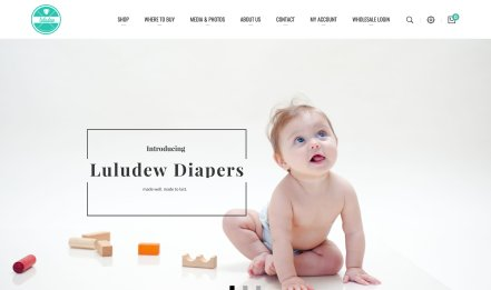 Luludew Diapers website portfolio thumbnail